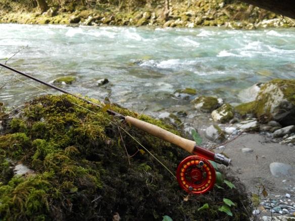La canne et la rivière